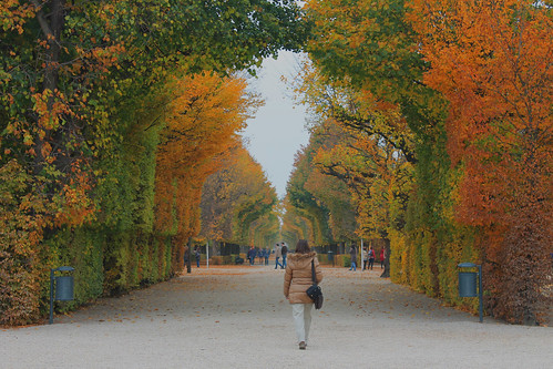 Free 3d Hd Wallpapers For Mobile Autumn In Austria Colors Of Fall In Schlo 223 Sch 246 Nbrunn