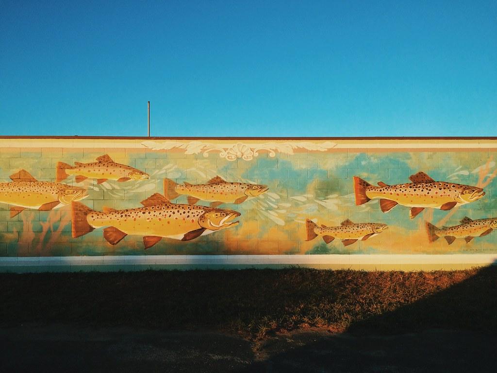 Fish Stories - Petoskey, Michigan