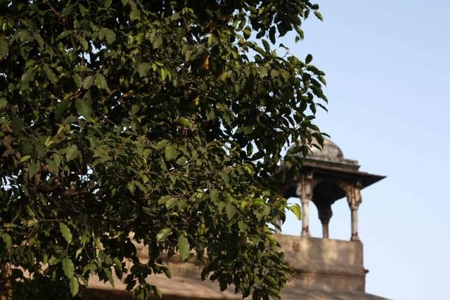 City Monument – Roshanara's Tomb, Near Ghantaghar