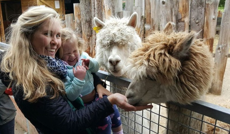 1 Alpacas at Vauxhall City Farm