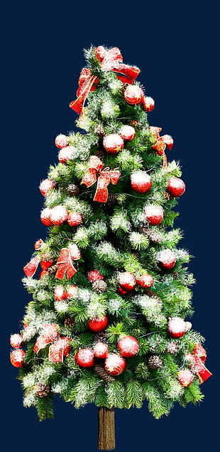 Free download Beautiful christmas tree material PNG clipart free