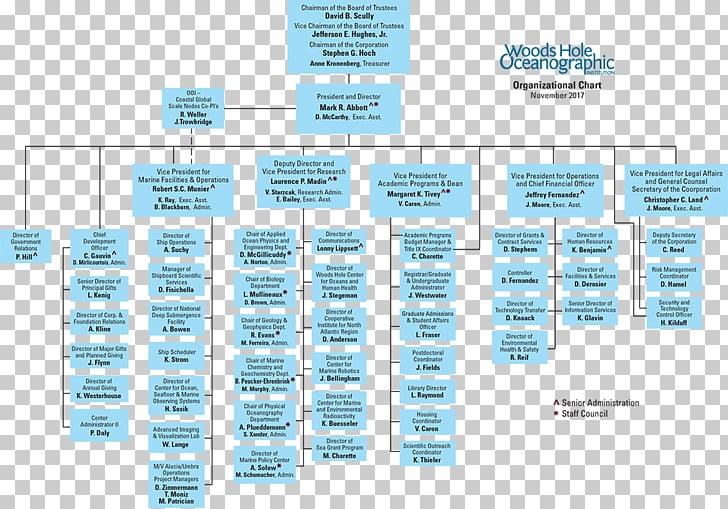 Organizational chart Organizational structure Business, organization