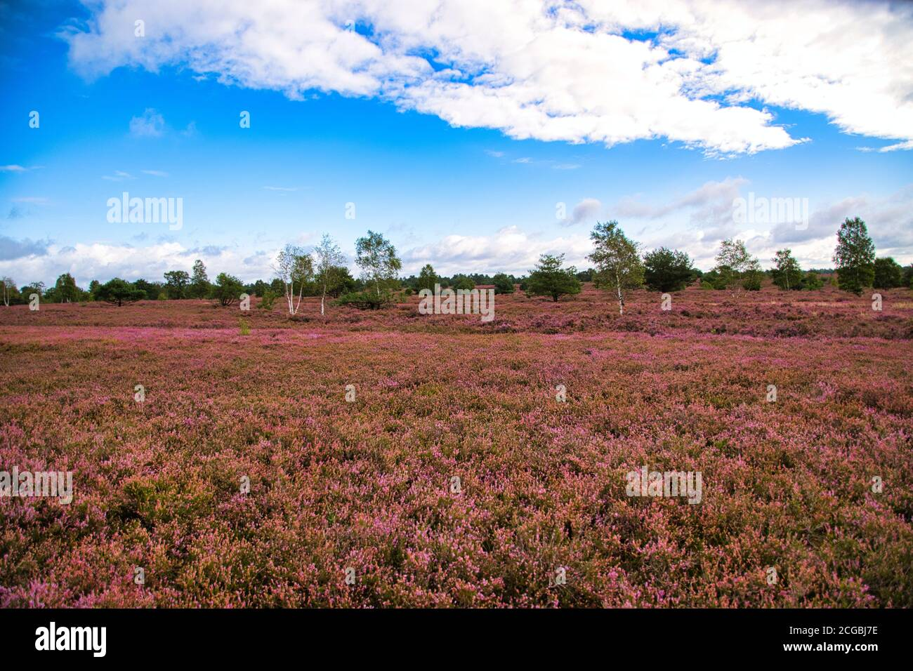 Ãú High Resolution Stock Photography And Images Page 7 Alamy