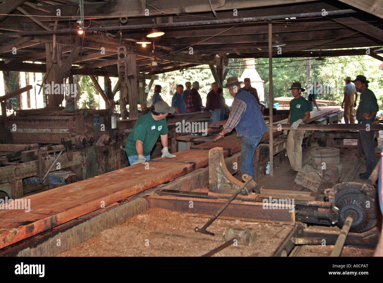 Lumber Mill Workers Stock Photos Lumber Mill Workers
