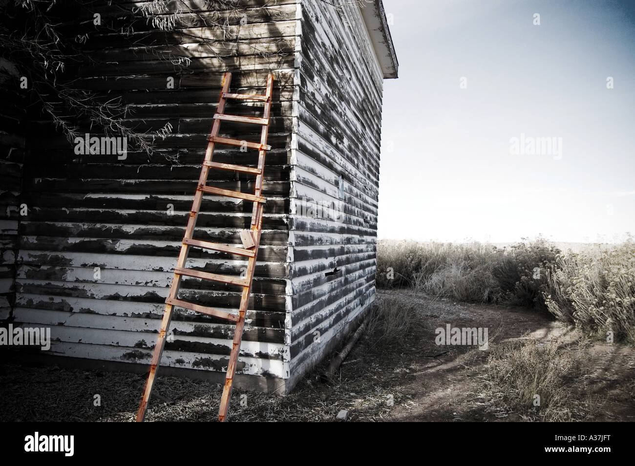 Old Rickety Ladder Leaning Against An Old Decrepit
