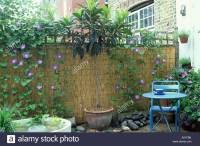woven fence at of small patio covered with climbing plants ...
