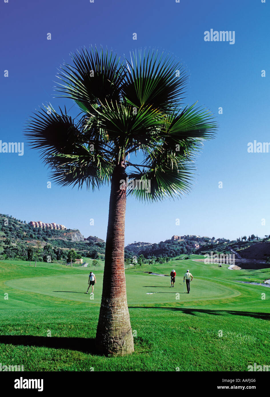 Avis Malaga Golf Course Of Los Arqueros In Banahavis Malaga Andalusia Spain