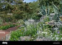 Rockery in Alum Chine Tropical Gardens, Westbourne ...