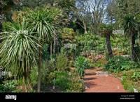 Alum Chine Tropical Gardens, Westbourne, Bournemouth ...