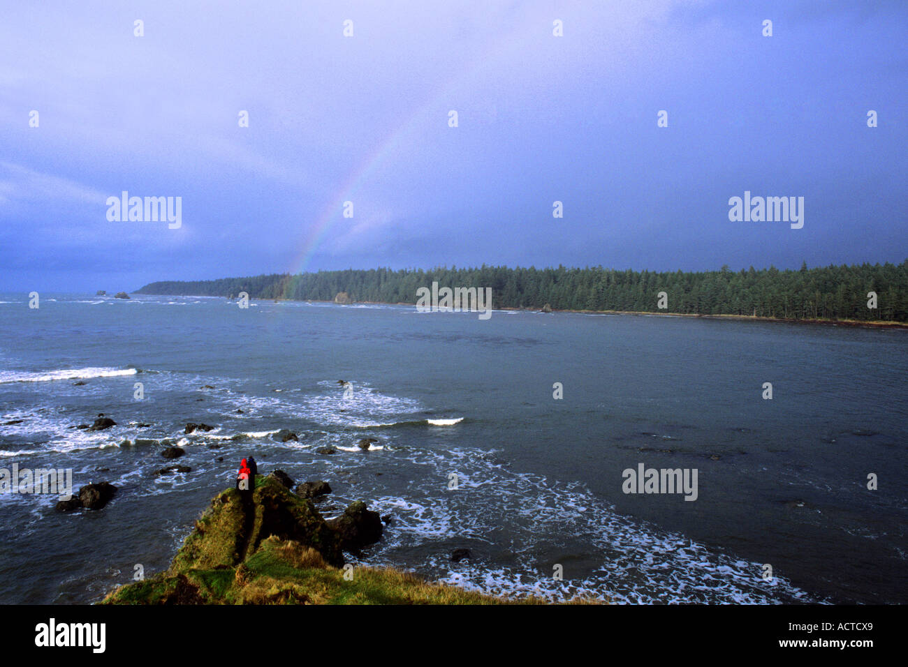 Tivoli Island Lake Ozette Cape Alava Olympic National Park Stock Photos And Cape