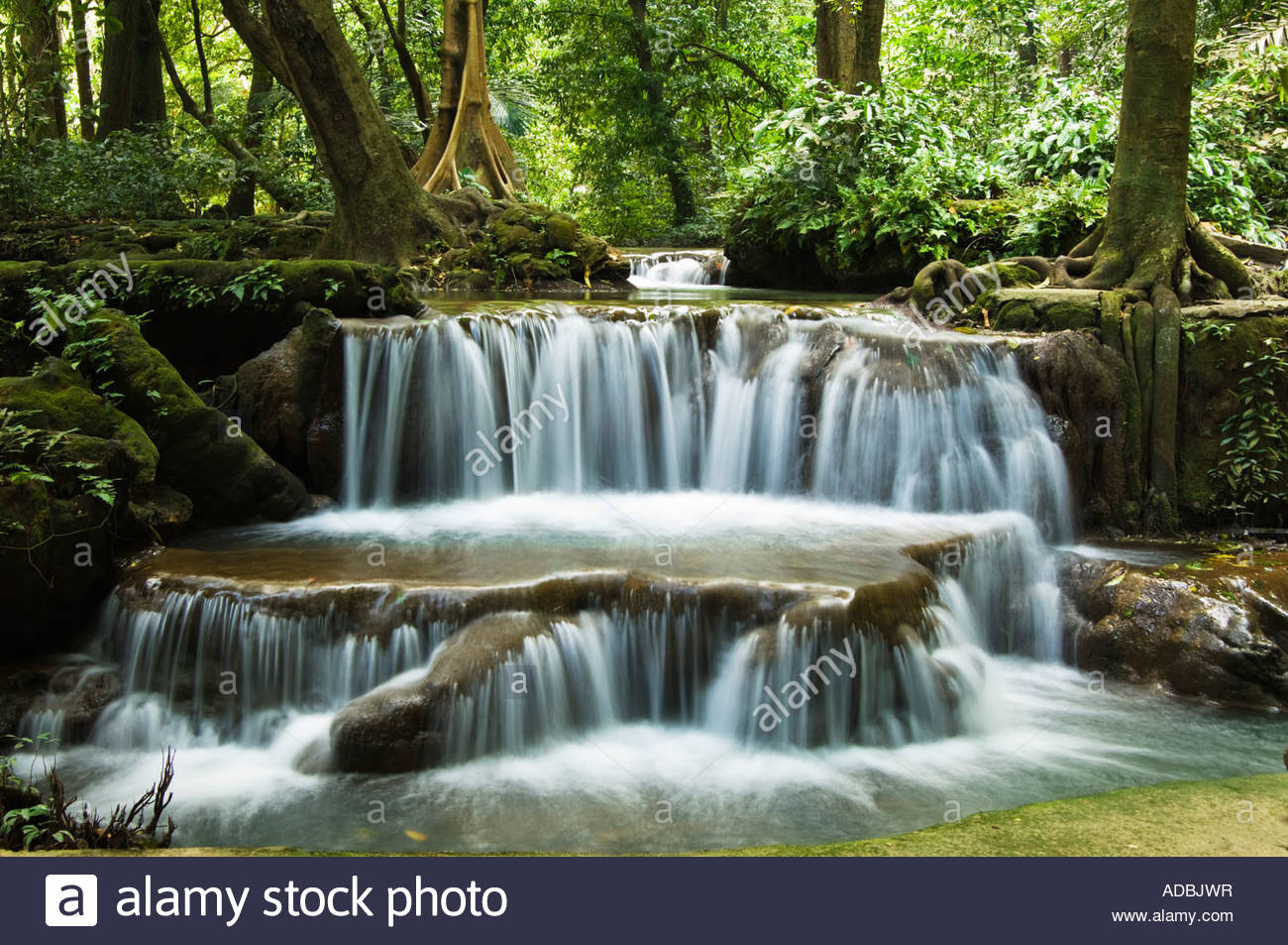 Animated Waterfalls Wallpapers Free Download Tropical Rainforest Waterfall Krabi Thailand Stock Photo