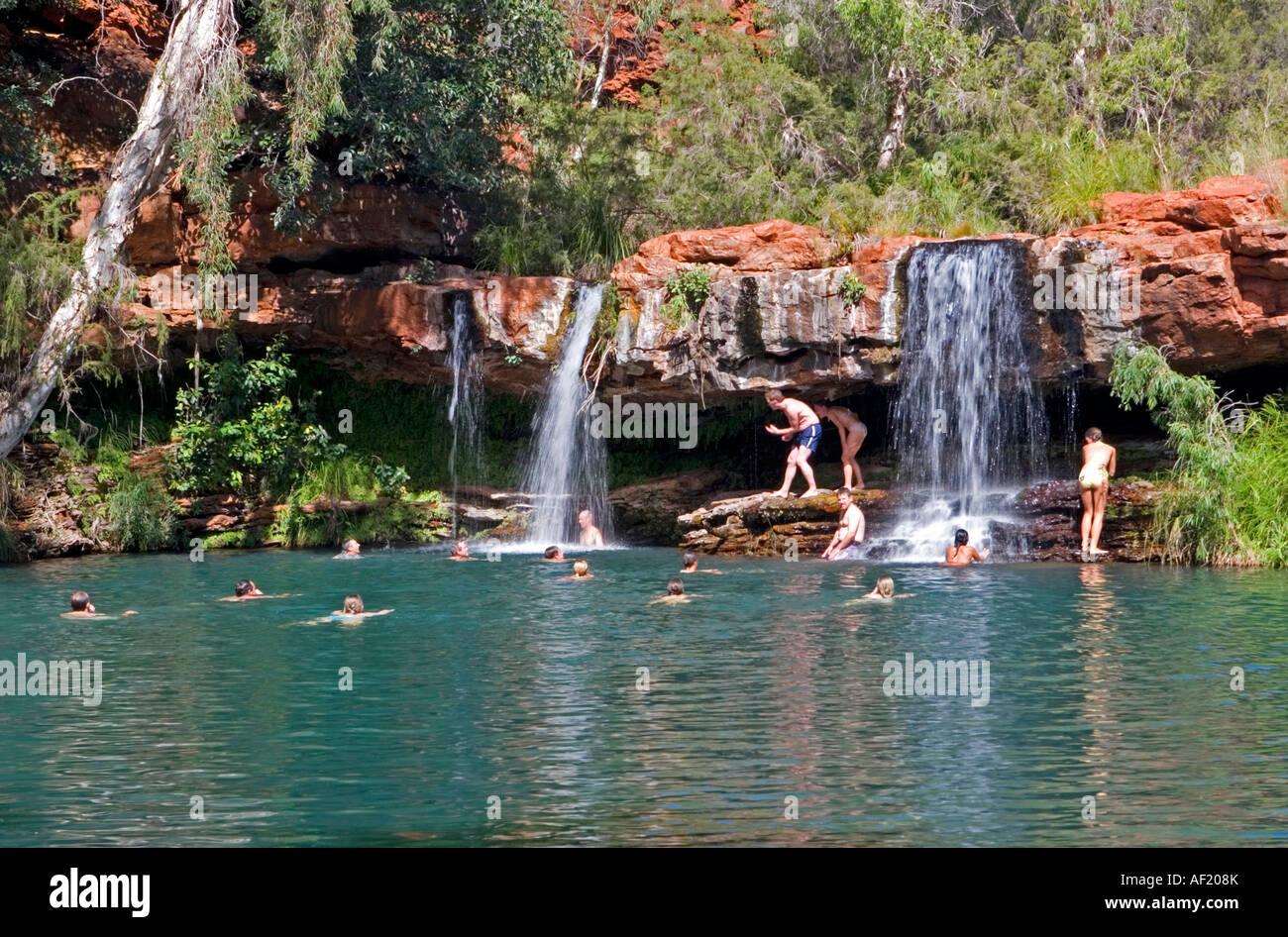 Fall Wallpaper For Windows Fern Pool In Karijini National Park Western Australia