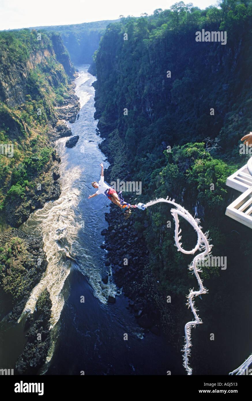 Victoria Falls Live Wallpaper Bungee Jumping Off 152 Meter High Victoria Falls Bridge