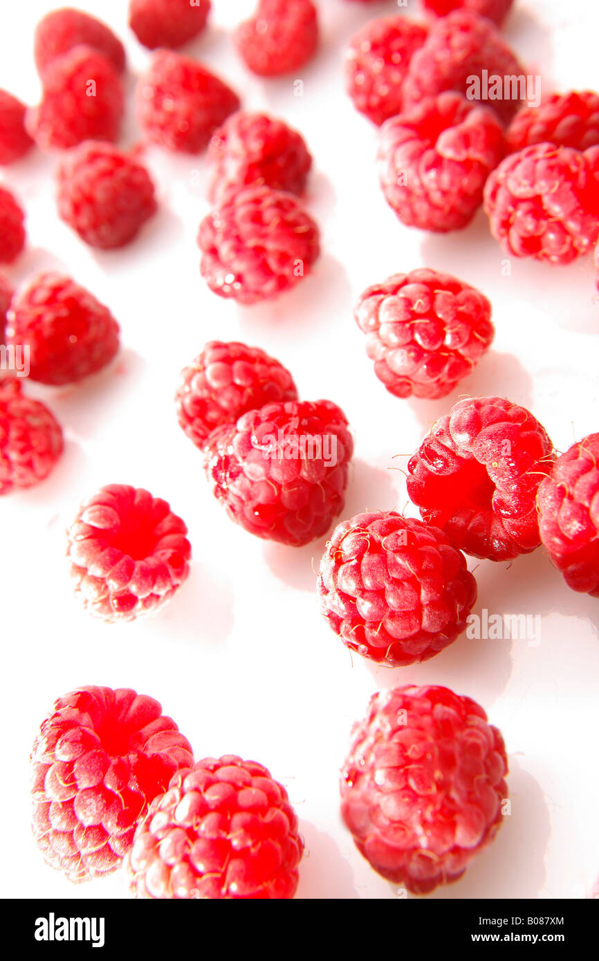 Himbeeren Bilder Himbeeren Red Raspberries Stock Photo 17392220 Alamy