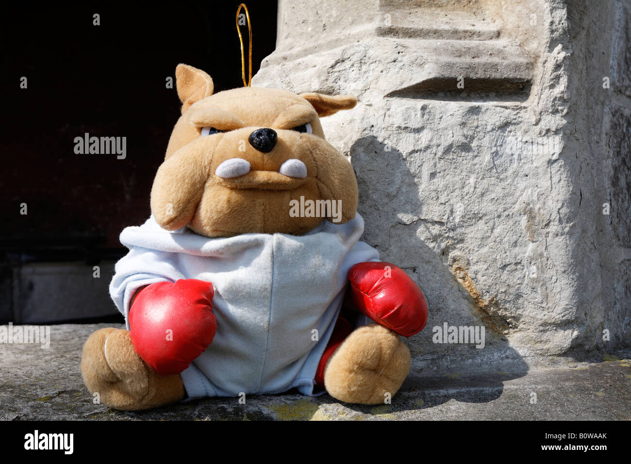 Stuffed Toy Bulldog Wearing Red Boxing Gloves Stock Photo Alamy