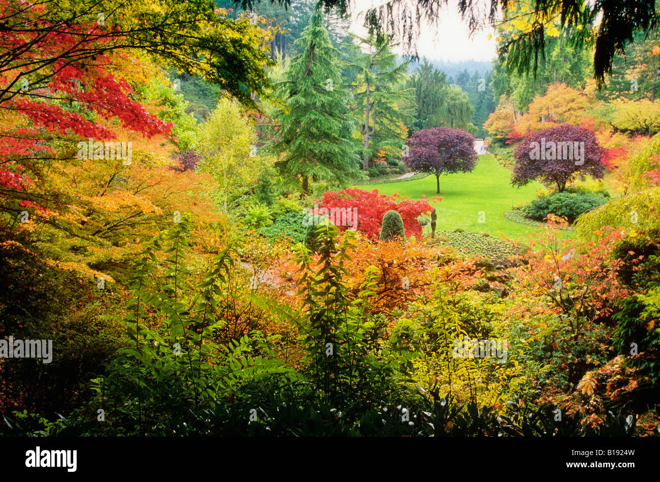 Fall Landscape Wallpapers Free Autumn At Butchart Gardens Victoria Vancouver Island