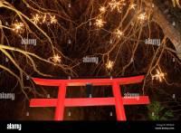 Japanese Garden Lighting Japanese Garden At Night With ...