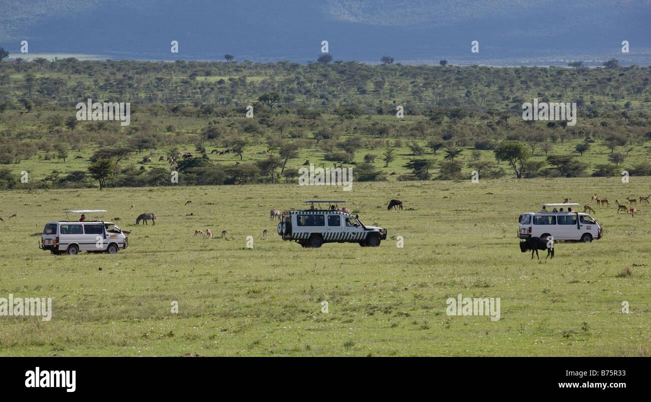 Masai Mara National Park Tourists Stock Photos Masai
