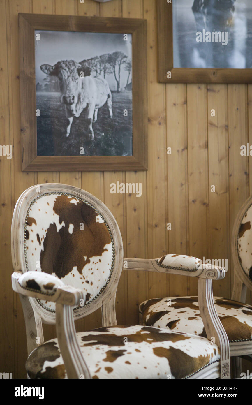 Holzvertäfelung Bilder Chairs Cow Fur Reference Pictures Wall Holzvertäfelung Stock Photo