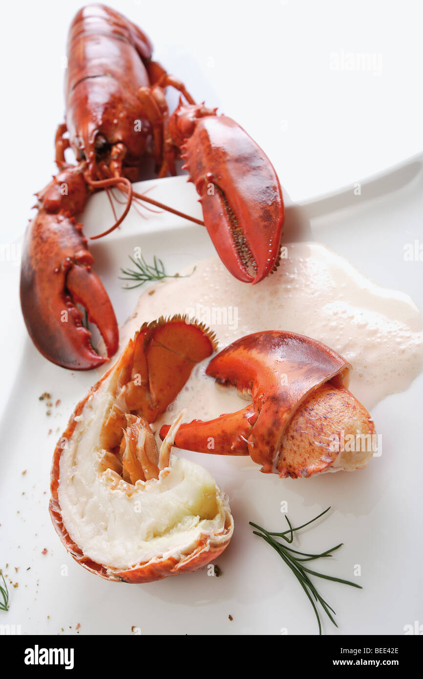 Flusskrebs Essen Lobster Tail And A Lobster Claw Cooked In A Sauce Stock Photo