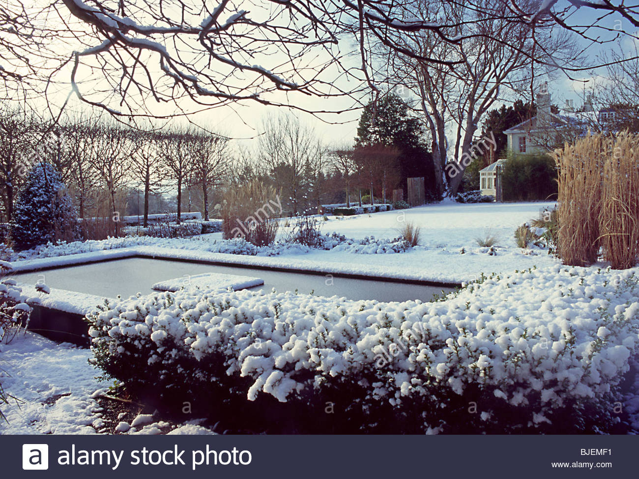 Pool Garten Winter Fiona Lawrenson Garden Winter Wit Stock Photos Fiona Lawrenson