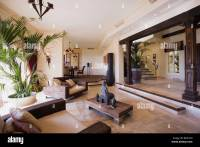 Tall houseplant in large open-plan hall living room in ...