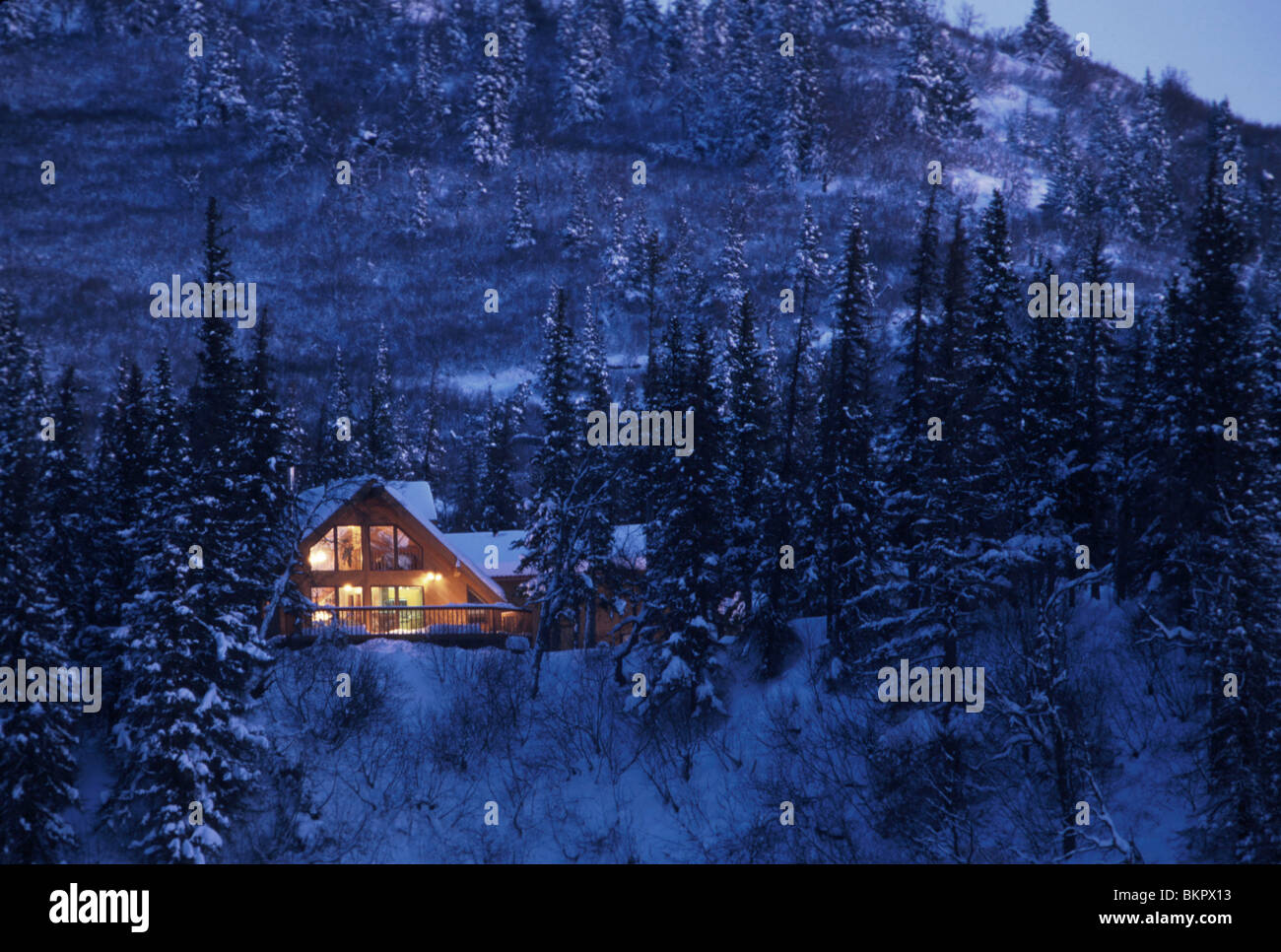 Snow Falling Live Wallpaper Download Home Cabin In Snow Covered Forest Lights On Dusk Sc Ak