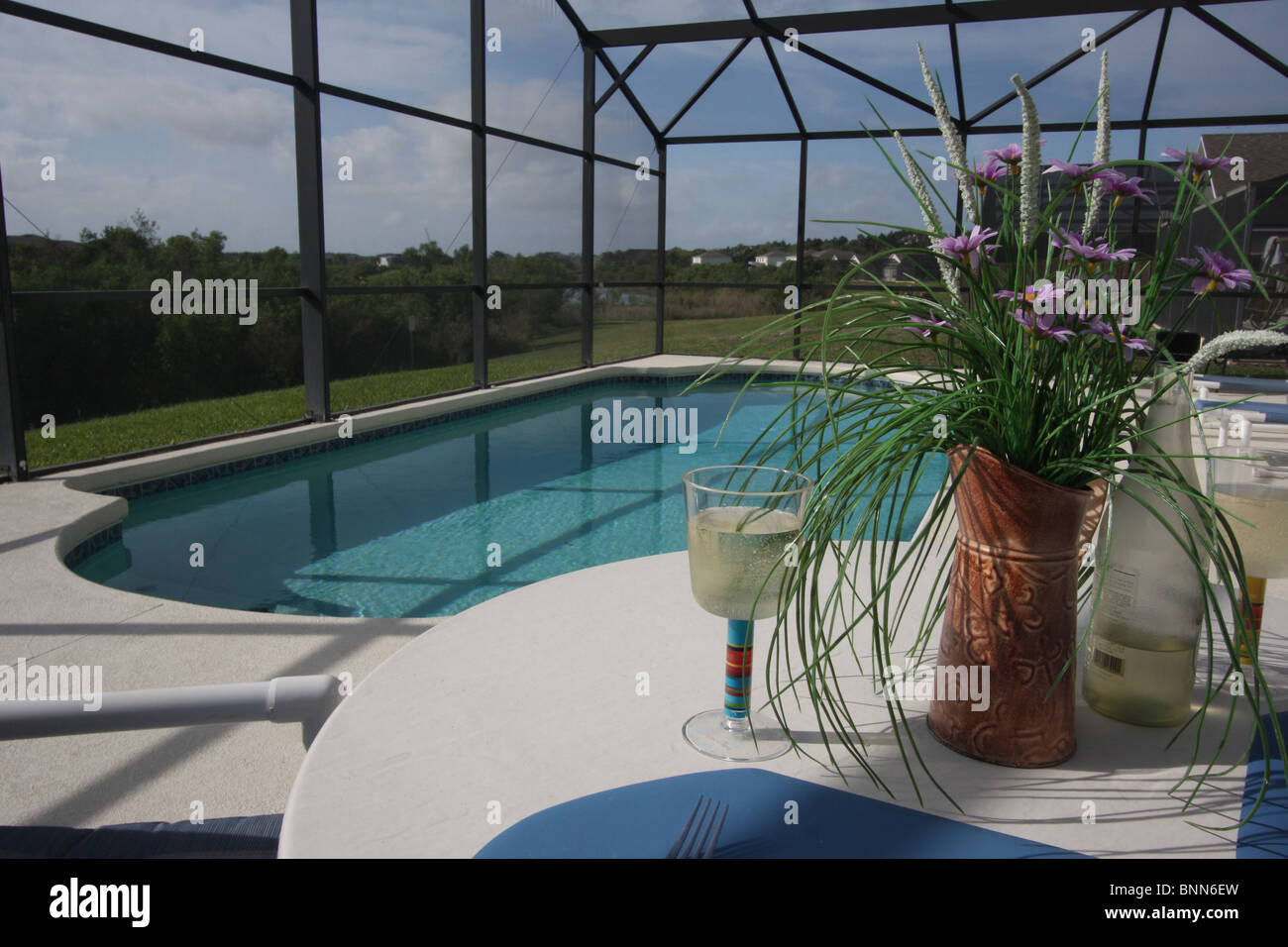 Jacuzzi Pool Covers Private Swimming Pool And Patio Area With Insect Mesh Cover Taken
