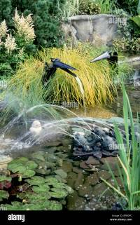Water garden with funny bird fountains, frogs spouting ...