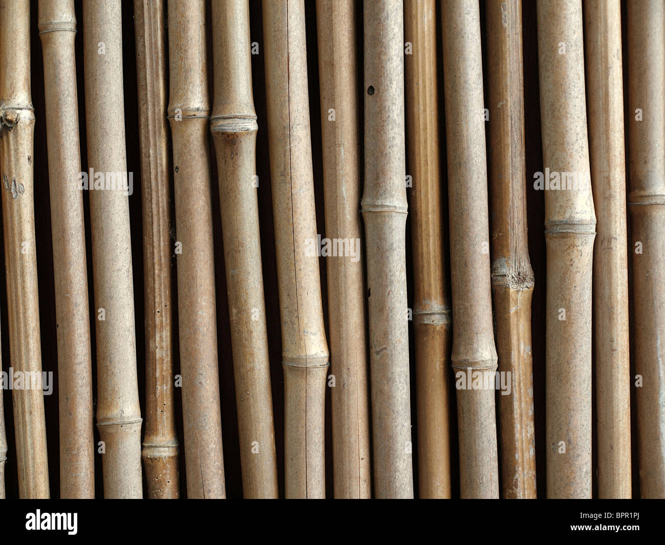 Bamboo Fence Canada Fence Poles Stock Photos Fence Poles Stock Images Alamy