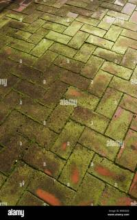 Ceramic Tiles Floor Stock Photos & Ceramic Tiles Floor ...