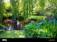 An ornamental garden pond in an English country garden ...