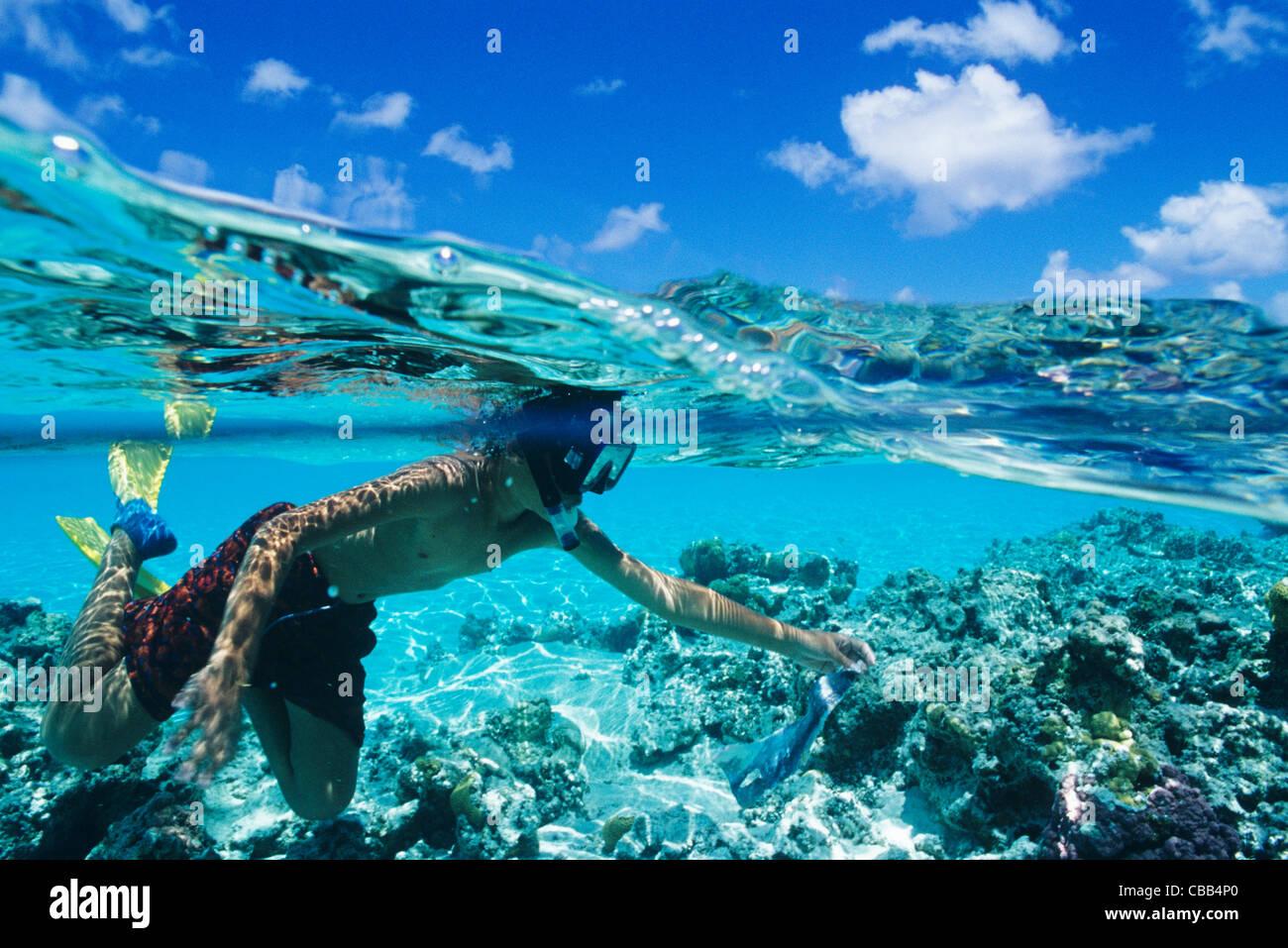 Black Live Wallpaper Cook Islands Kūki Āirani South Pacific Ocean Aitutaki