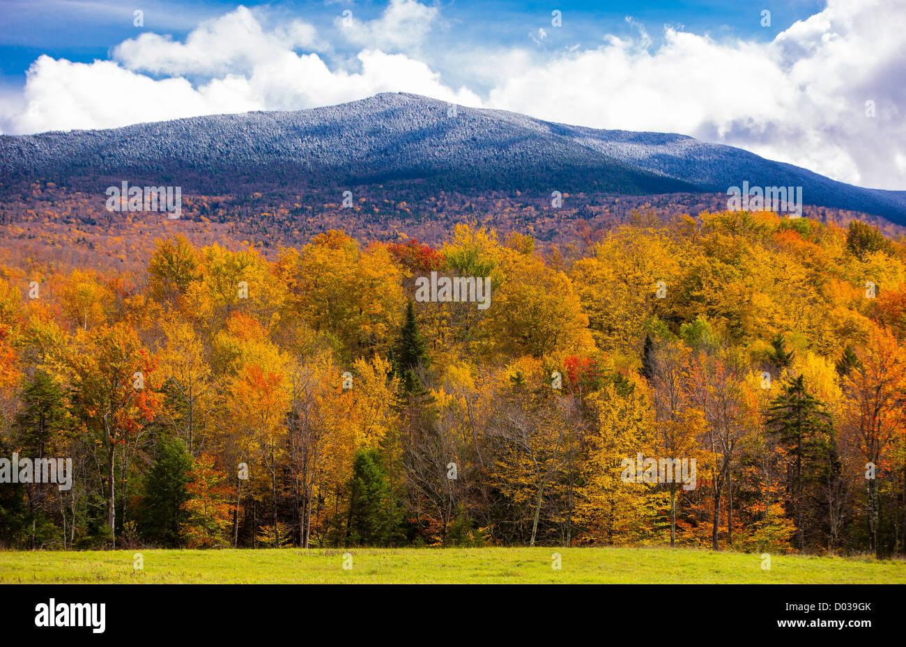 Vermont Fall Foliage Wallpaper Green Mountains Vermont Usa Autumn Foliage On Trees