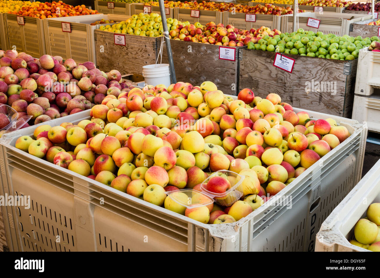 Fruit Bins For Sale Parkdale Oregon Apples In Bulk Bins For Sale At A Local