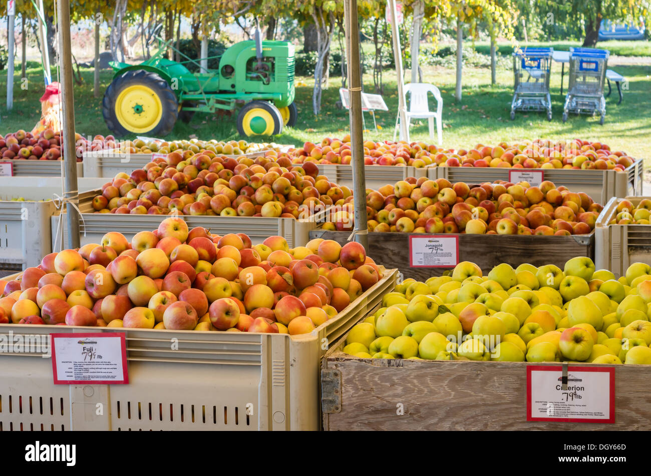 Fruit Bins For Sale Parkdale Stock Photos And Parkdale Stock Images Alamy