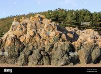 Basaltic Pillow lava rocks exposed on beach in island ...