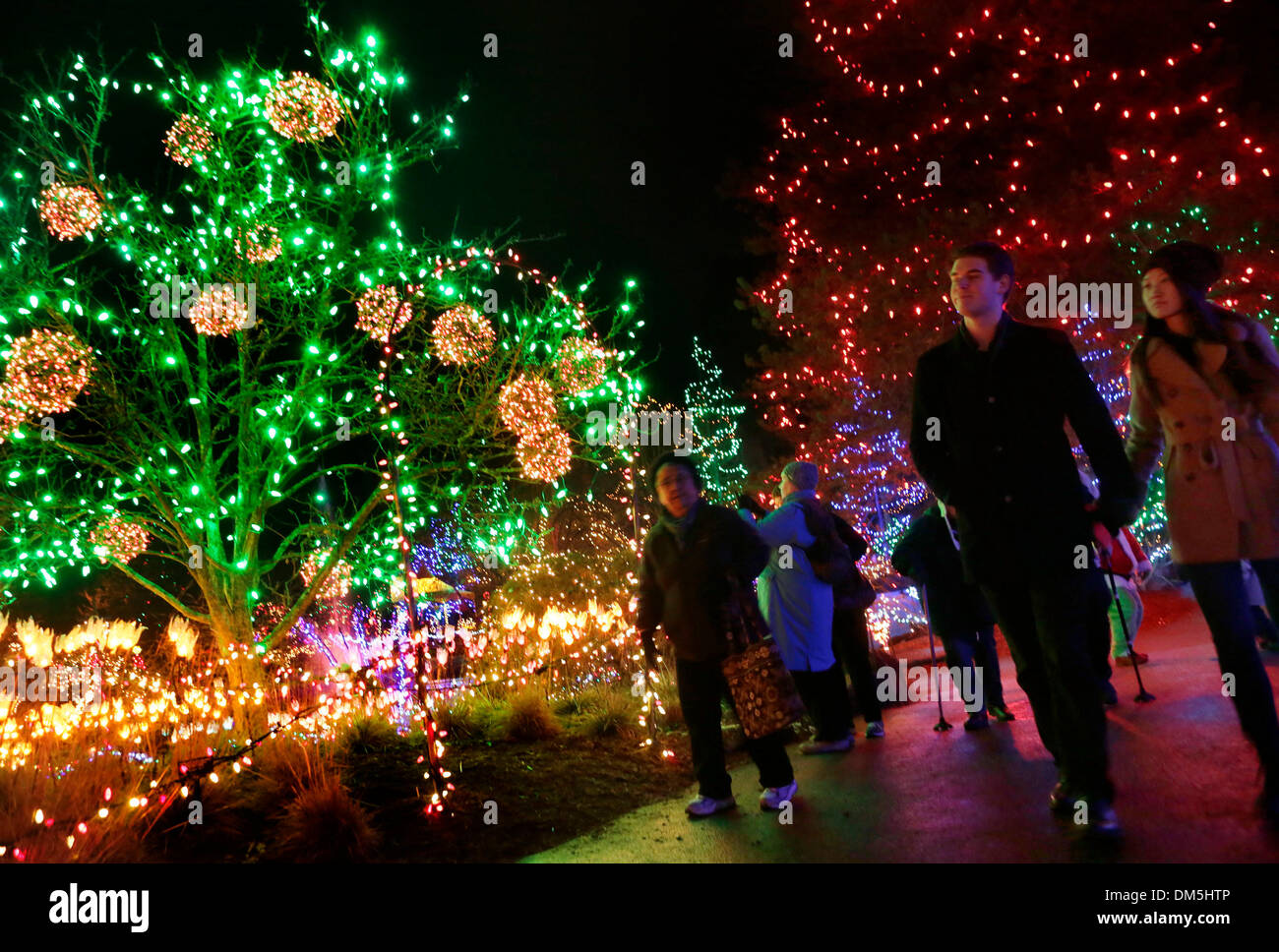 Christmas Led Lights Canada Vancouver Canada 11th Dec 2013 People Enjoy Their Night With