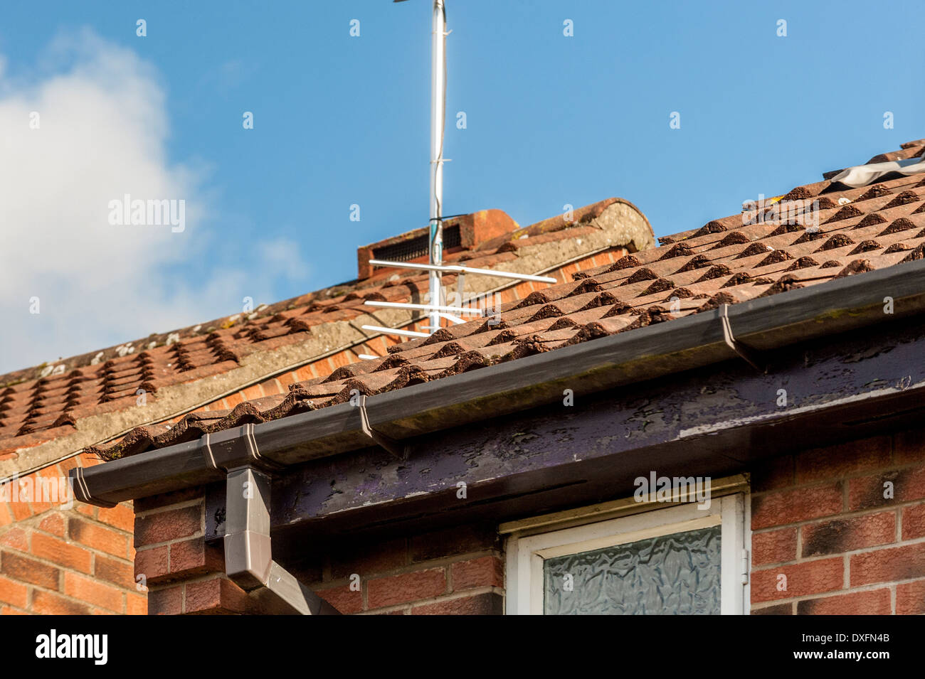 Fascia Board Standard Domestic Tiled Roof On House With Guttering And Fascia