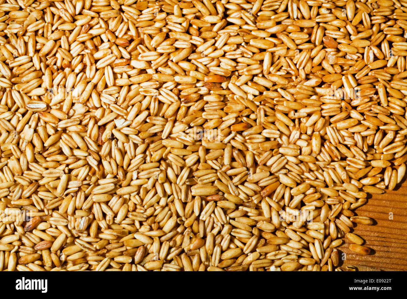 Hafer Preis Grain Punch Of The Oat Yields Fue Grain In The Agriculture