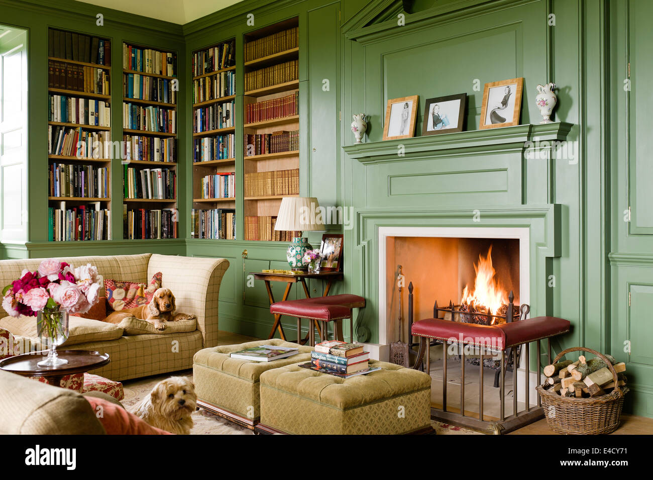 Fireplace With Fender In Cosy Library Painted In Calke