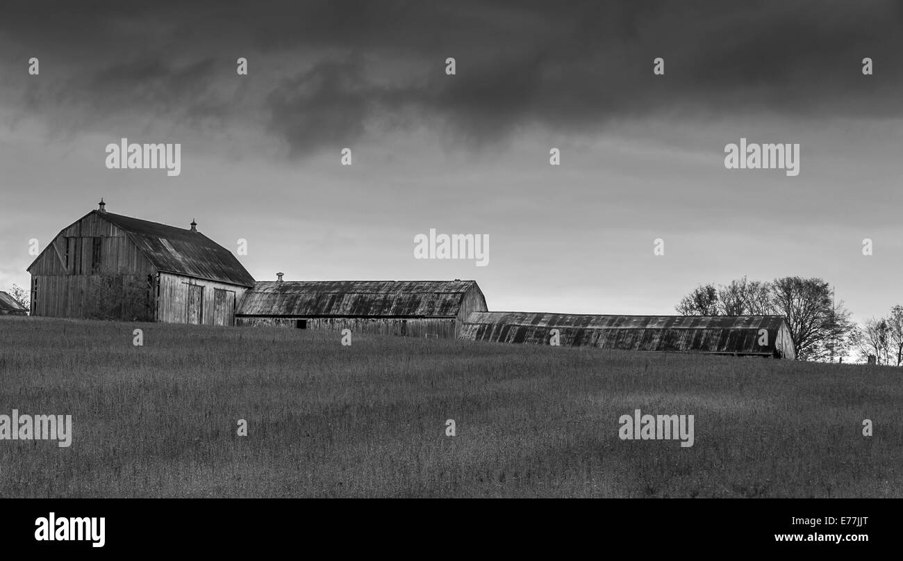 A Black And White Photo Of A Old Barn In A Field On With Dark Clouds Stock Photo Alamy