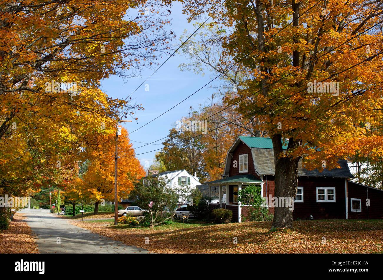 Fall New England Wallpaper Bridgton Maine Usa United States America Autumn