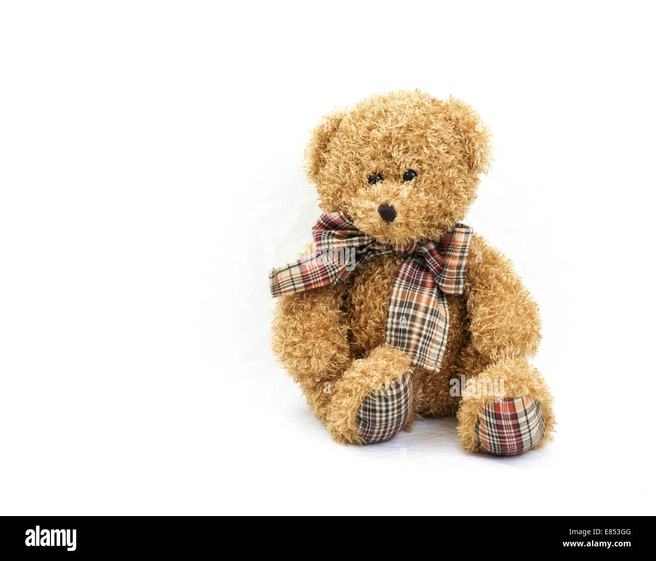 Teddy Plaid Teddy Bear Against A White Background With Plaid Bow Tie And Plaid