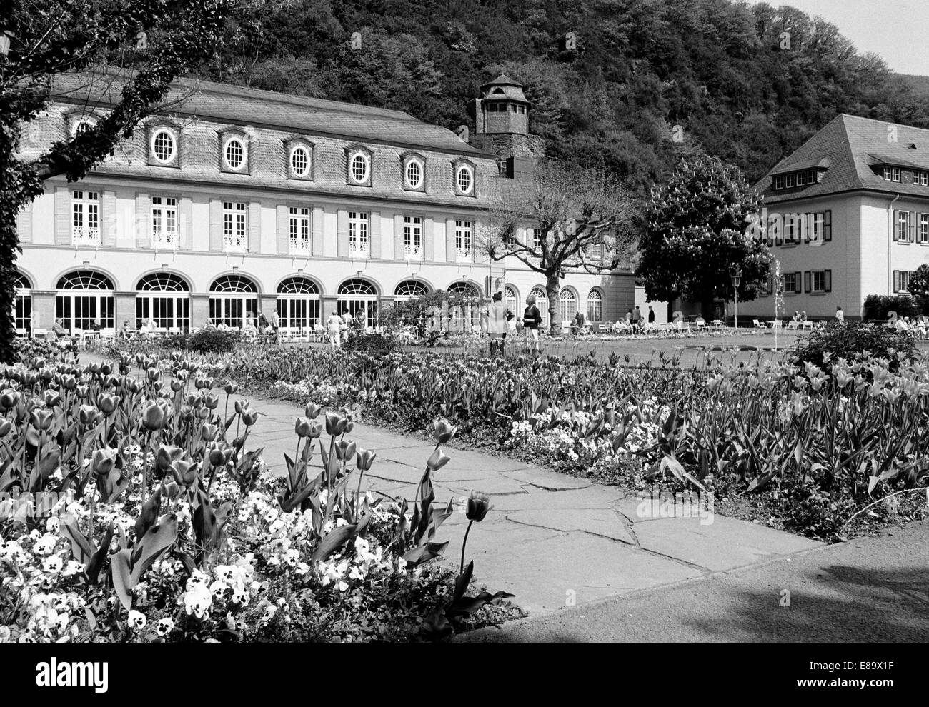 Deko Bad Bertrich Blume Black And White Stock Photos Images Alamy