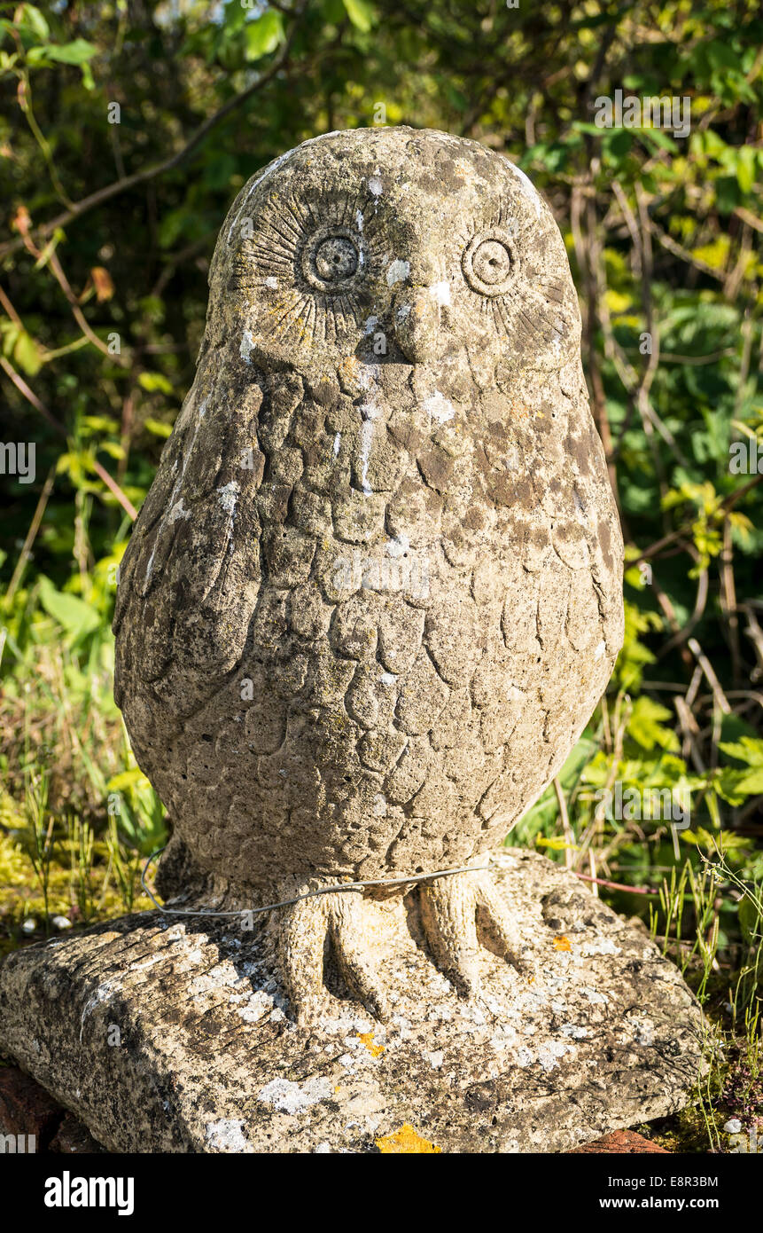 Garten Design Owl Owl In Garden Stock Photos Owl In Garden Stock Images Alamy