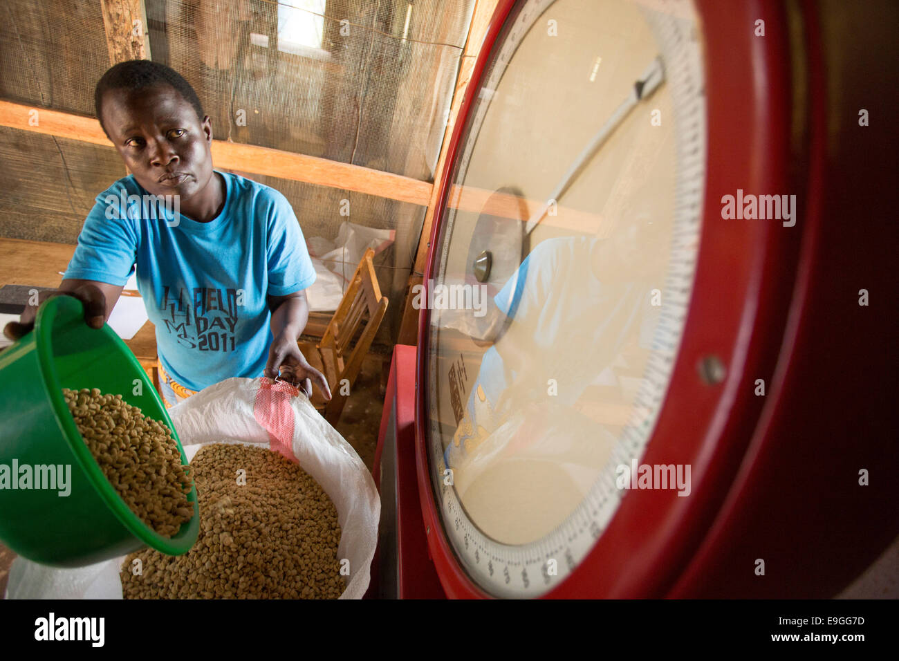 Kitchen Scale Kenya African Woman Working In Garden Stock Photos And African