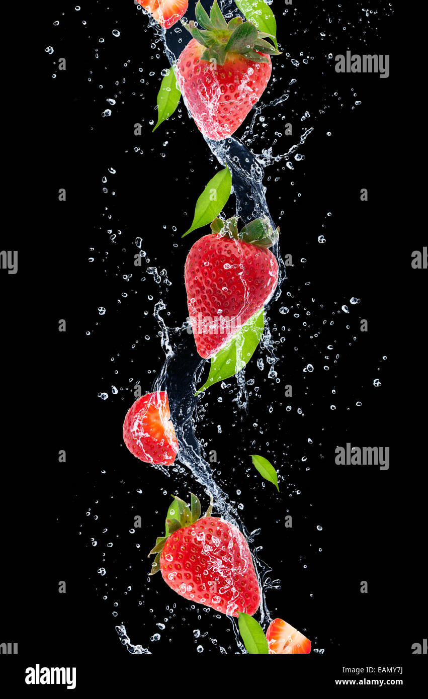 Drop Of Water Falling From A Leaf Dark Background Wallpaper Strawberries In Water Splash Isolated On Black Background