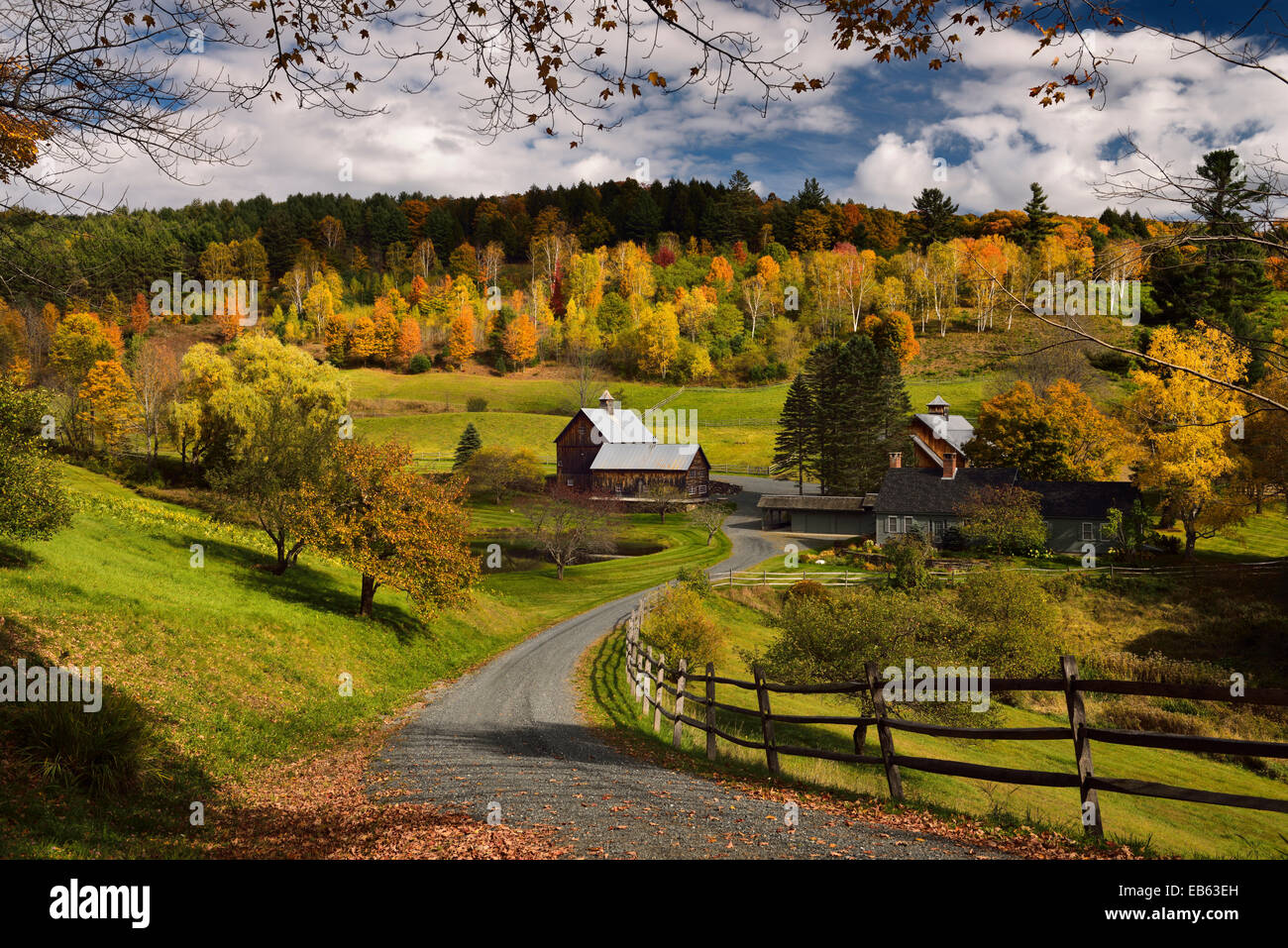 Foggy Fall Wallpaper Fall Tree Colors At Sleepy Hollow Farm Homestead On