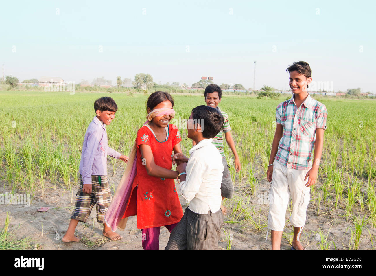 Hide And Seek Kids Indian Rural Children Farm Playing Hide And Seek Stock Photo